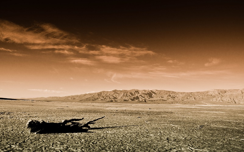 le plus grand crocodile prehistorique