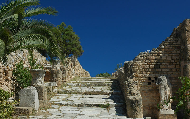 run in carthage